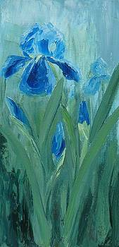 Blue Iris by Mary Rogers