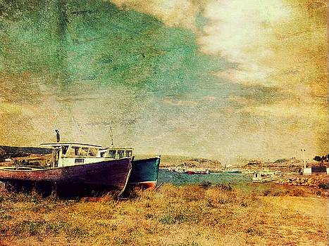 Boat Dreams on a Hill by Tracy Munson