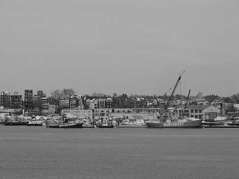 Boston boats by Elizabeth Hardie