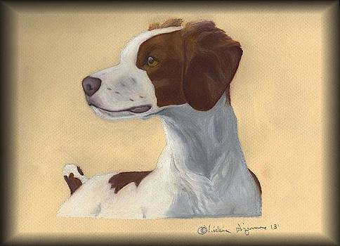 Brittany Spaniel by Vickie Sizemore