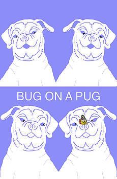 Bug on a Pug by Chris Goulette