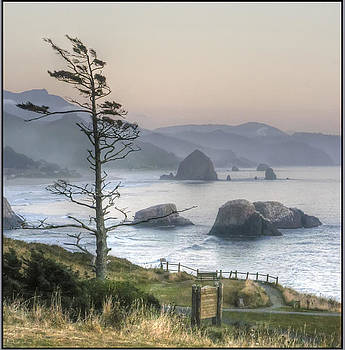 Cannon Beach View - Oregon by Geraldine Alexander