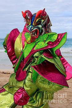 Carnival on the Beach by Karen Lee Ensley