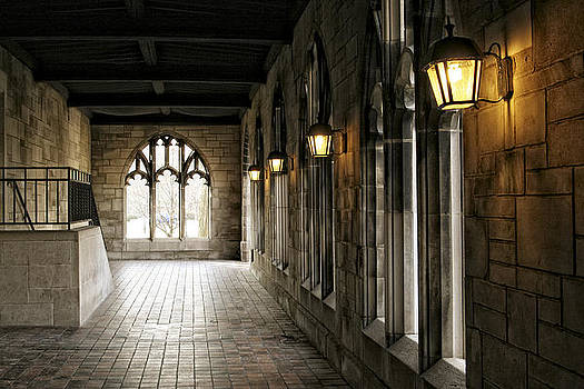 Chicago Halls  by Eugene Bergeron