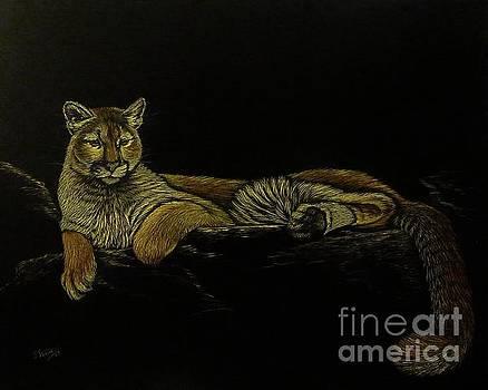 Cougar by Jennifer Jeffris