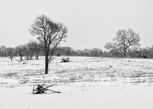 Country Winter by Sarah Rodefeld