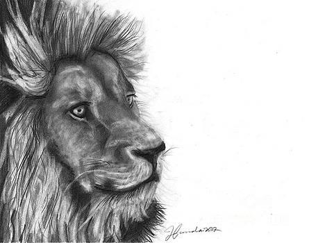 Courage Of A Lion by J Ferwerda