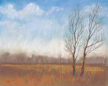 Deliberate Solitude by Christine Camp
