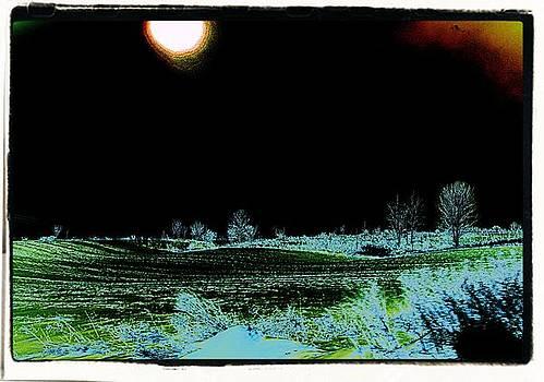 Digital field by Gary Pavlosky