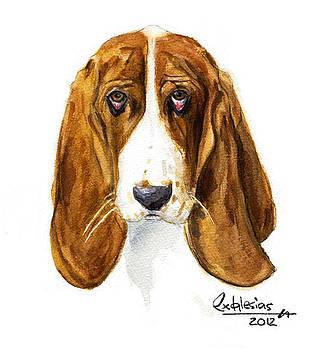 Dog  by David Iglesias