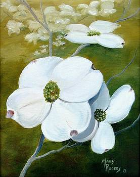 Dogwood Blossoms by Mary Rogers