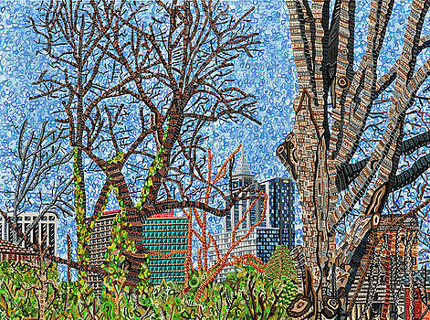 Downtown Raleigh - View from Chavis Park by Micah Mullen