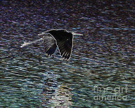 Enhanced Heron by Carol McCutcheon