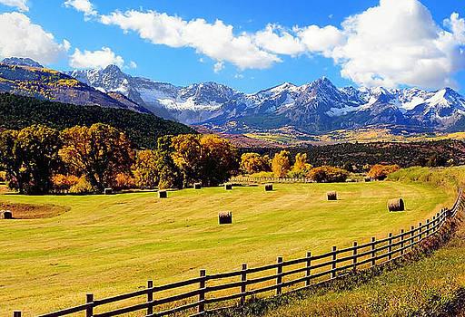 Fall Harvest Sneffels Range Colorado by Steve Barge