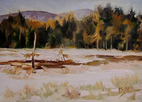 February Thaw by Patricia Seitz