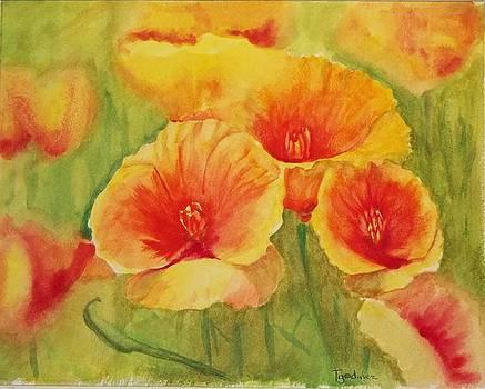 Field of Sunshine by Terry Godinez