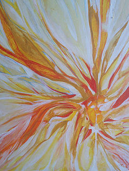 Fire fly by Stephanie Frances Meyer