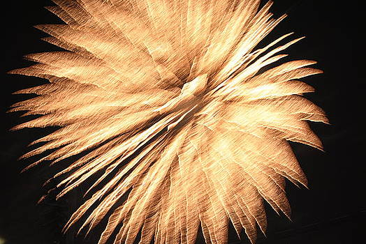 Fireworks 15 by April  Robert