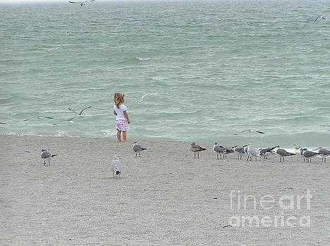 Florida by Tracy L Teeter