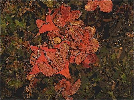 Flowers by Tanya Moody