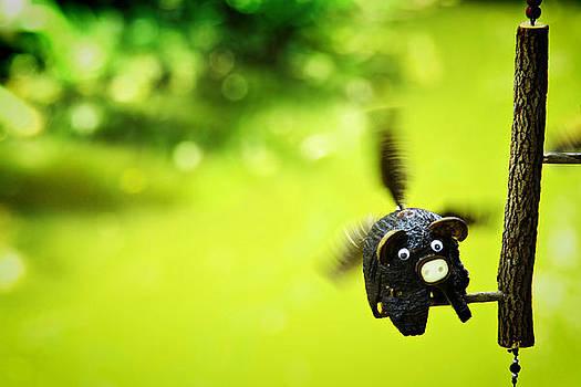 Flying Burin by Suradej Chuephanich