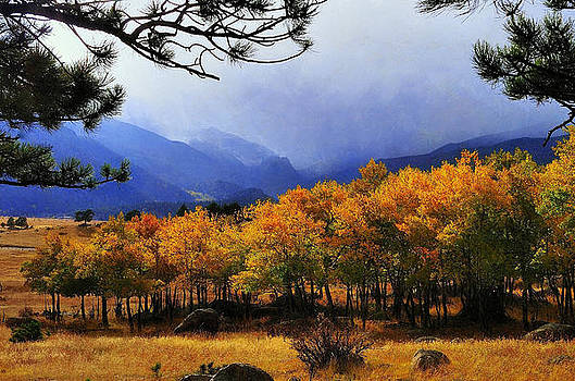 Foggy Fall day in Rocky Mountain National Park by Steve Barge