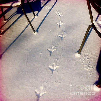 Footsteps in the snow by Sara  Meijer
