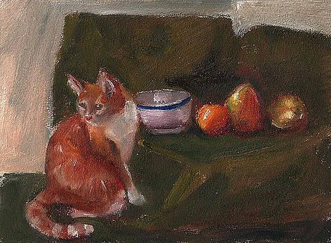 Frankie Still Life by Jessmyne Stephenson