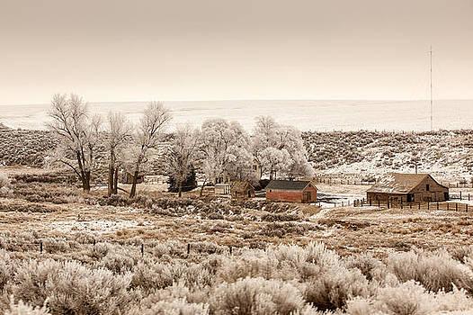 Frosty Farm by Paul Bartoszek