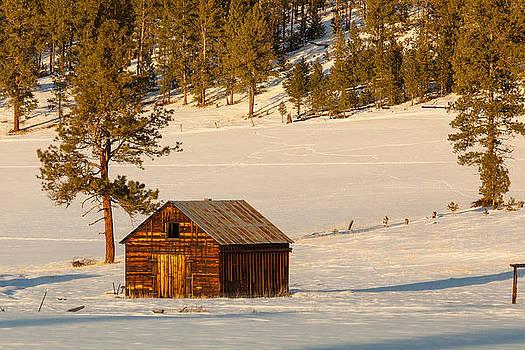 Ghost Town Barn by Paul Bartoszek