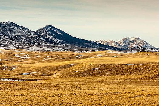 Glacier Mountain view by Paul Bartoszek