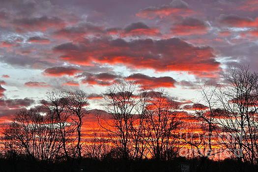 God's Bold Sunrise by Jay Nodianos