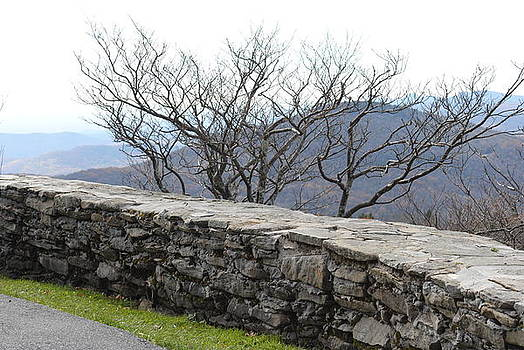 Grandfather Mountain Rock Wall by Misty Stach