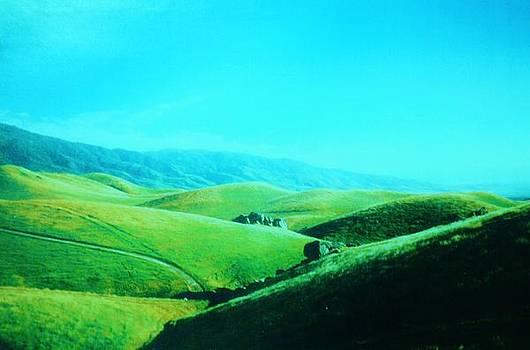 Green Rolling Sierras by Jacquelyn Roberts