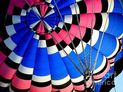 Hot Air Balloon Ride by Gwendolyne Allen