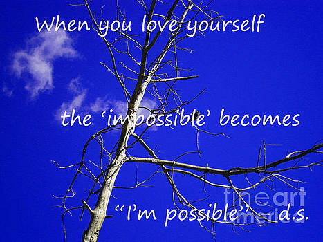 I'm possible by Drew Shourd