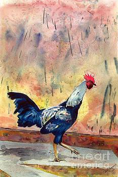 Indian Rooster by David Ignaszewski