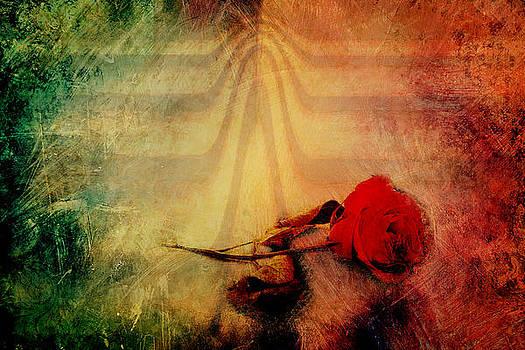 Inferno by Elizabeth Wilson