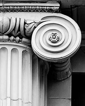 Ionic Scroll by Suzanne Barber
