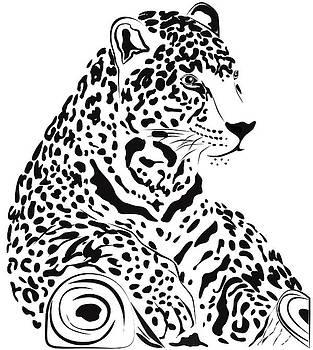 Jaguar by Carla  Nichiata