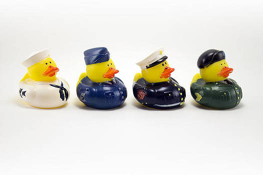 Joint Force Ducks by Charles  Dutch