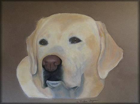 Labrador Retreiver by Vickie Sizemore