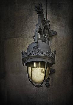 Let the Light Shine  by Yelena Rozov