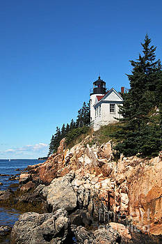 Lighthouse in Acadia  by Miro Vrlik