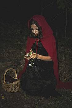 Little Red Riding Hood by Cherie Haines