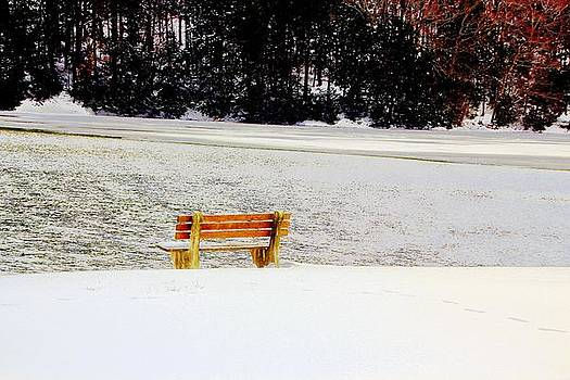 Lonely bench at the lake by Gary Pavlosky