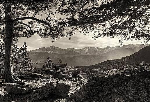 Longs Peak Through the Trees by Steve Barge