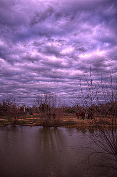 Moody Day by Kelly Kitchens