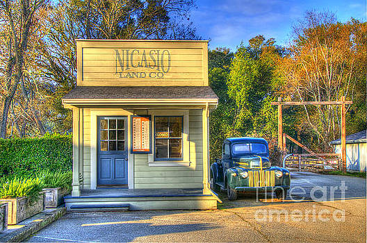 Nicasio Land Company by Alberta Brown Buller