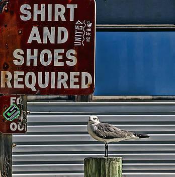 No Shirt No Shoes No Worries by Nancie Rowan